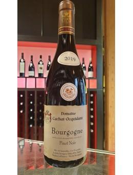 Bourgogne pinot noir 2019 -...